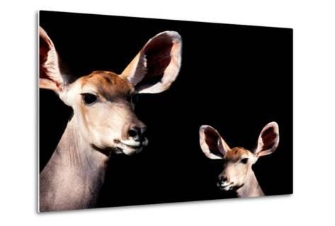 Safari Profile Collection - Antelope and Baby Black Edition-Philippe Hugonnard-Metal Print