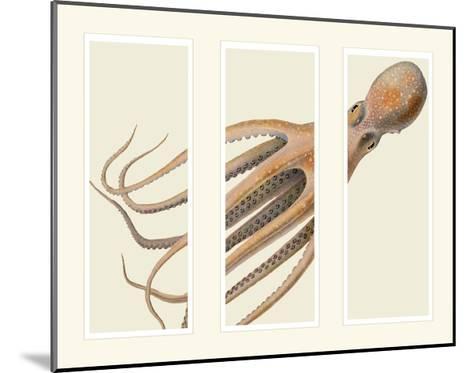 Octopus on 3 panels-Fab Funky-Mounted Art Print