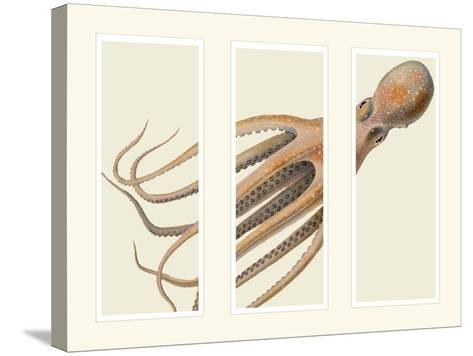 Octopus on 3 panels-Fab Funky-Stretched Canvas Print