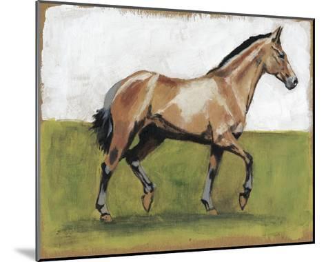 Equestrian Studies III-Naomi McCavitt-Mounted Art Print