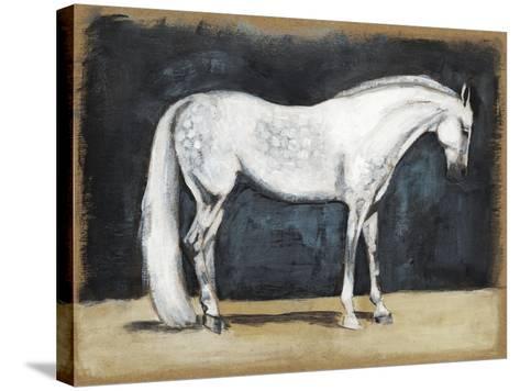 Equestrian Studies V-Naomi McCavitt-Stretched Canvas Print