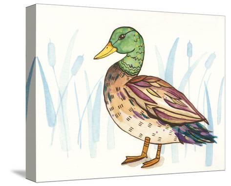 Wetland Mallard I-Rebekah Ewer-Stretched Canvas Print