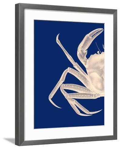 Contrasting Crab in Navy Blue a-Fab Funky-Framed Art Print
