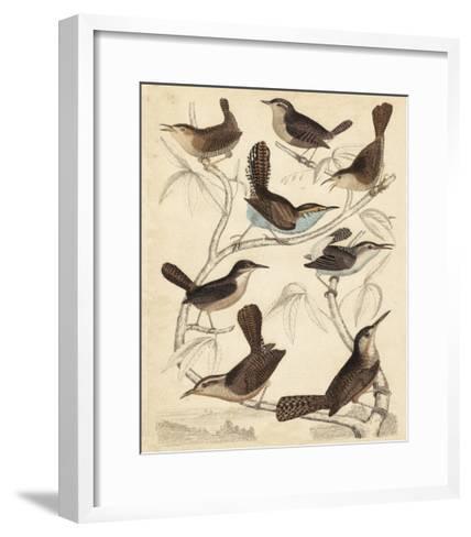 Avian Habitat VI-Milne-Framed Art Print