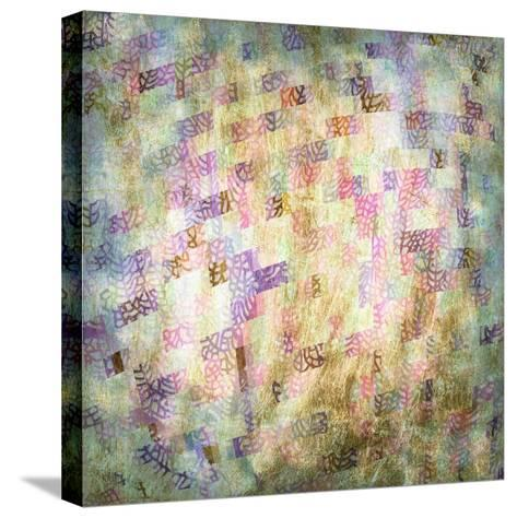 Coral Party III-Studio W-Stretched Canvas Print