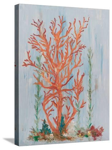 Painterly Coral II-Olivia Brewington-Stretched Canvas Print