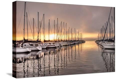 At First Light-Danny Head-Stretched Canvas Print