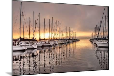 At First Light-Danny Head-Mounted Photographic Print