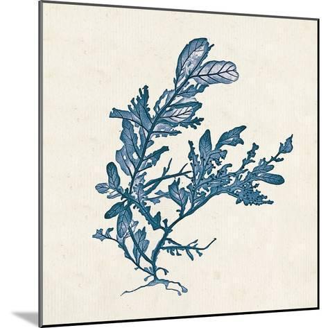 Indigo Algae III-Jennifer Goldberger-Mounted Art Print