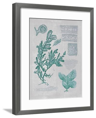 Teal Coral II-Jennifer Goldberger-Framed Art Print