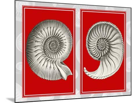 Nautilus Shells On Red-Fab Funky-Mounted Art Print