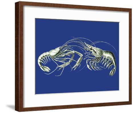 Shrimps On Blue-Fab Funky-Framed Art Print