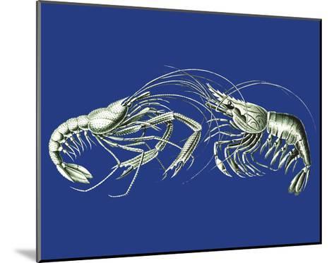 Shrimps On Blue-Fab Funky-Mounted Art Print