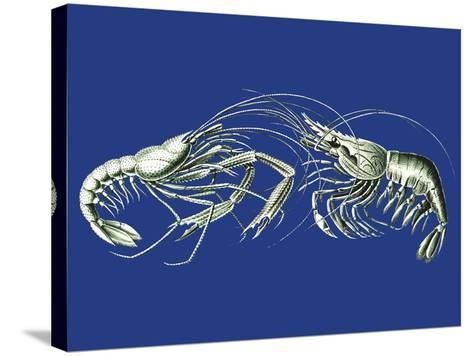 Shrimps On Blue-Fab Funky-Stretched Canvas Print