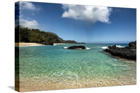 Paradise-Danny Head-Stretched Canvas Print