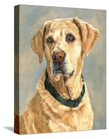 Lucy Yellow Lab-Edie Fagan-Stretched Canvas Print