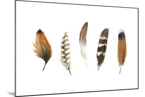 Red Rock Feathers I-Grace Popp-Mounted Art Print