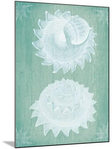 Shells White on Turquoise-Fab Funky-Mounted Art Print