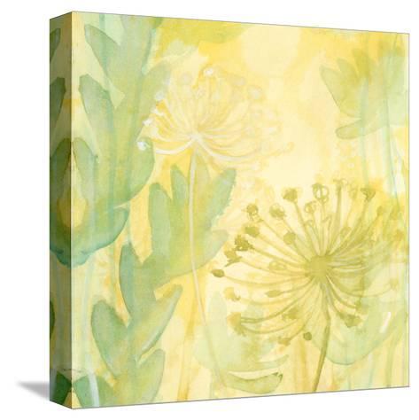 Florid Garden I-Renee W^ Stramel-Stretched Canvas Print