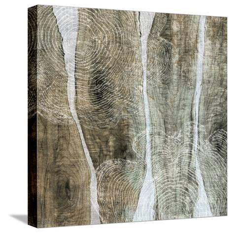 Live Edge IV-John Butler-Stretched Canvas Print