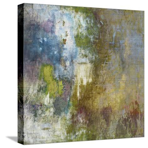Journey II-John Butler-Stretched Canvas Print