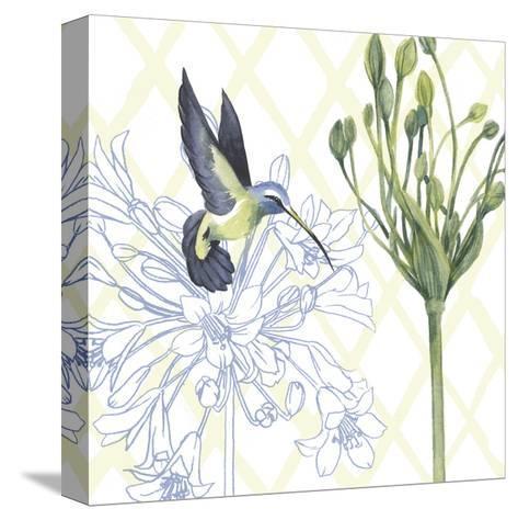 Hummingbird Dance III-Grace Popp-Stretched Canvas Print