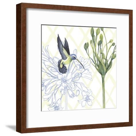 Hummingbird Dance III-Grace Popp-Framed Art Print