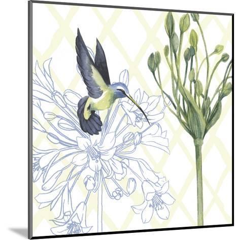 Hummingbird Dance III-Grace Popp-Mounted Art Print