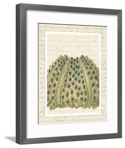 Blue Corals On VIntage Script d-Fab Funky-Framed Art Print