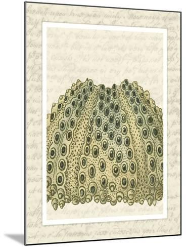 Blue Corals On VIntage Script d-Fab Funky-Mounted Art Print