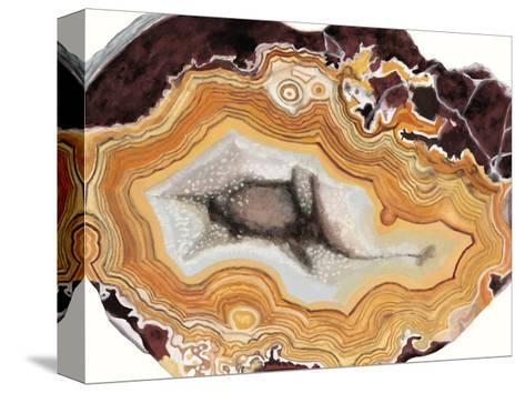 Agate Studies III-Naomi McCavitt-Stretched Canvas Print