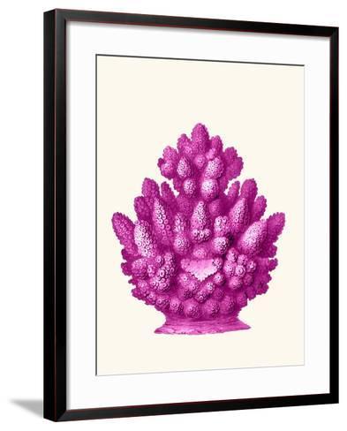Haeckel Hexacoralla Coral Pink-Fab Funky-Framed Art Print