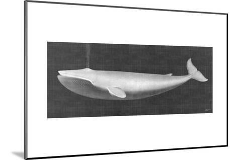 Whale Watching I-John Butler-Mounted Art Print