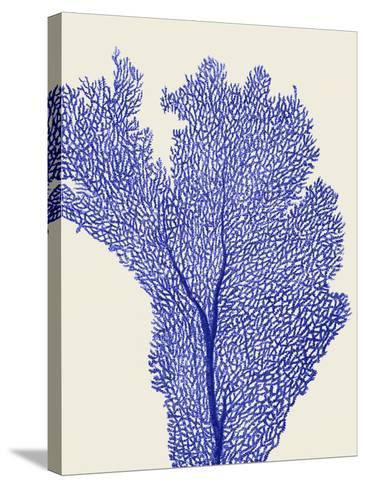 Blue Corals 2 e-Fab Funky-Stretched Canvas Print