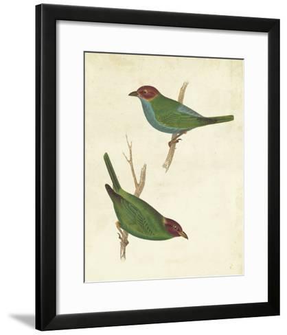 Peruvian Tanager II-Cassin-Framed Art Print
