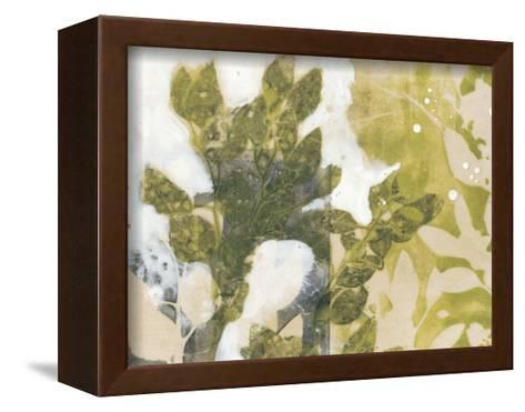 Leaf Spray II-Jennifer Goldberger-Framed Canvas Print