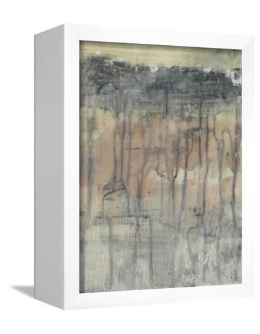 Mineral Layers II-Jennifer Goldberger-Framed Canvas Print