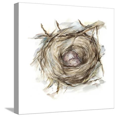 Bird Nest Study IV-Ethan Harper-Stretched Canvas Print