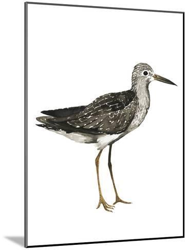 Sea Bird III-Grace Popp-Mounted Art Print
