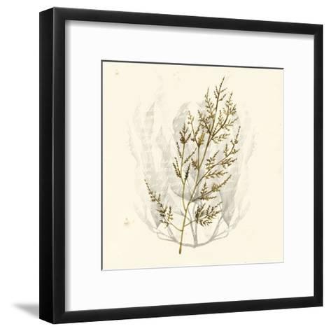 Vivid Algae I-Grace Popp-Framed Art Print