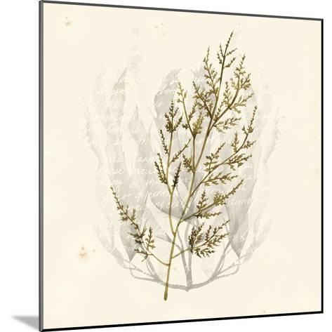 Vivid Algae I-Grace Popp-Mounted Art Print