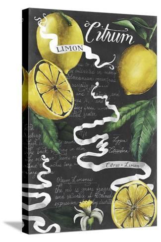Chalkboard Citrus I-Grace Popp-Stretched Canvas Print