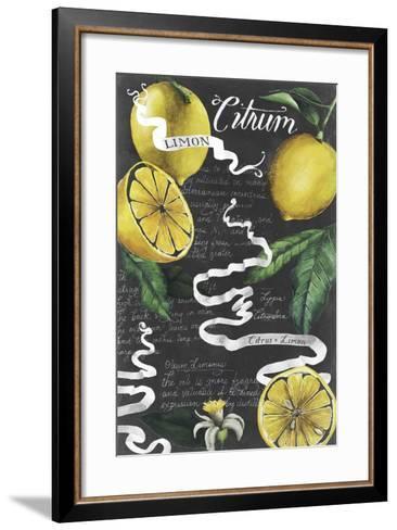 Chalkboard Citrus I-Grace Popp-Framed Art Print