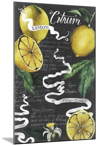 Chalkboard Citrus I-Grace Popp-Mounted Art Print