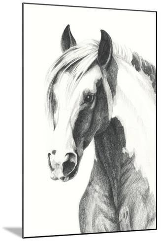 American Paint II-Grace Popp-Mounted Art Print
