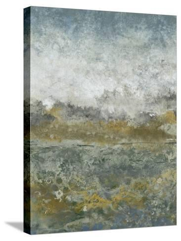 Aquatic Range I-Tim OToole-Stretched Canvas Print
