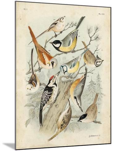 Gathering of Birds II-G^ Lubbert-Mounted Art Print