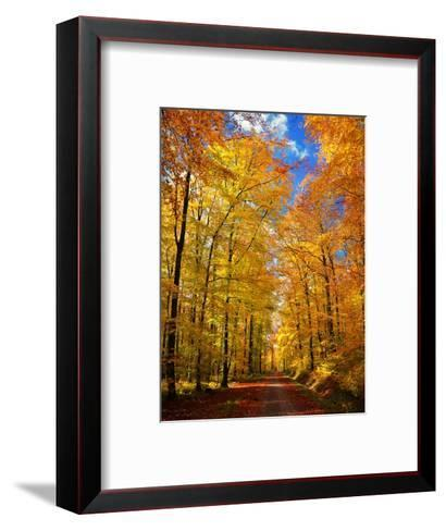 Way to Fall-Philippe Sainte-Laudy-Framed Art Print