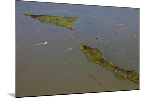 Aerial View of Oiled Bird Nesting Colonies in Barataria Bay Area of the Mississippi River Delta-Gerrit Vyn-Mounted Photographic Print