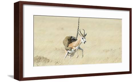 Leopard (Panthera Pardus) Hunting Springbok (Antidorcas Marsupialis) Etosha-Wim van den Heever-Framed Art Print